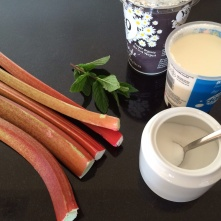 Rhubarb fool ingredients
