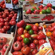 Tri colore tomatoes