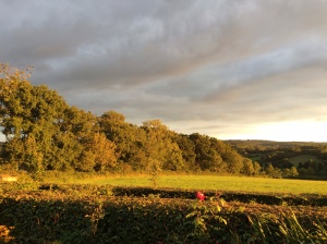 Woodhay view